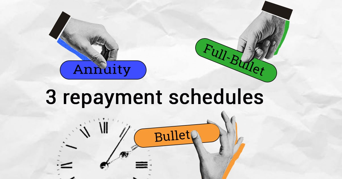 3 types of repayment schedules (bullet, full-bullet, annuity)